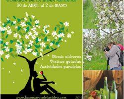 Puente de mayo en Asturias 2016, ofertas de hotel y casas rurales