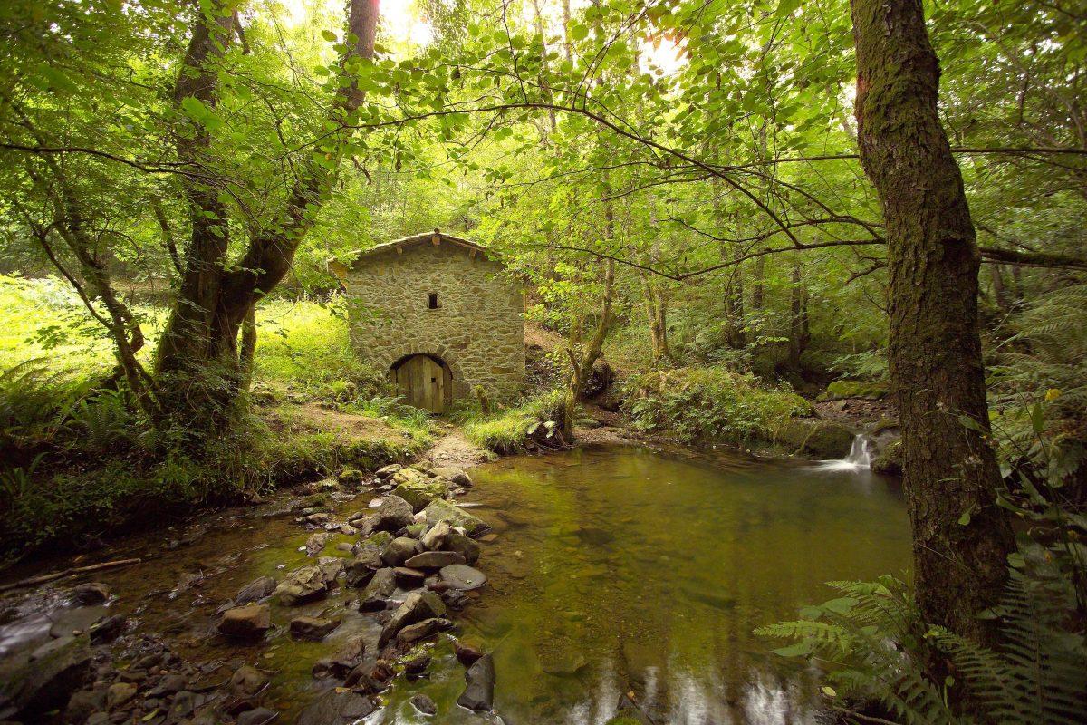 Senderismo, rutas Asturias, naturaleza Asturias, rutas, btt, bicicleta de montaña Asturias, Bimenes