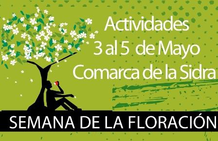 banners-floracin-manzano-comarca-sidra-Asturias-2013-peq