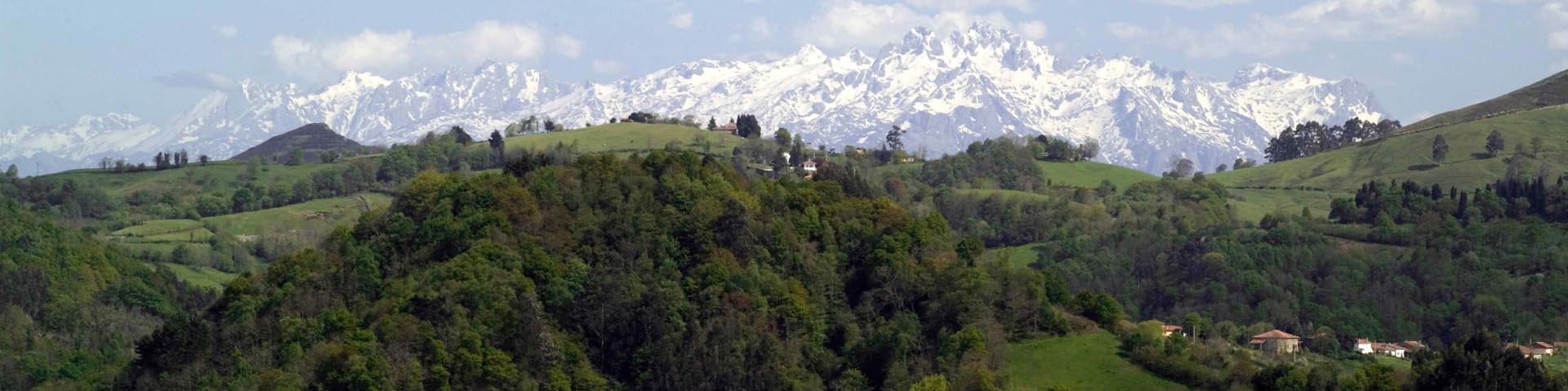 La comarca de la sidra con Picos de Europa al fondo